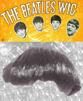 Beetles Wigs 41